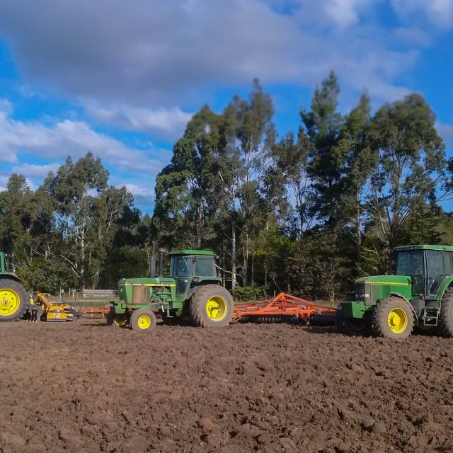Cultivating early October ready for Sowing Marofat Peas
