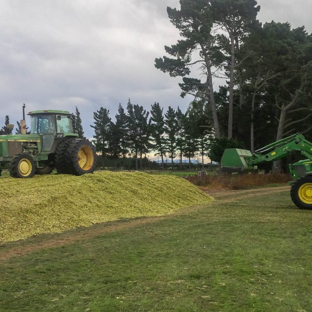 Creating Maize stack with Jd 4240 and 7430.