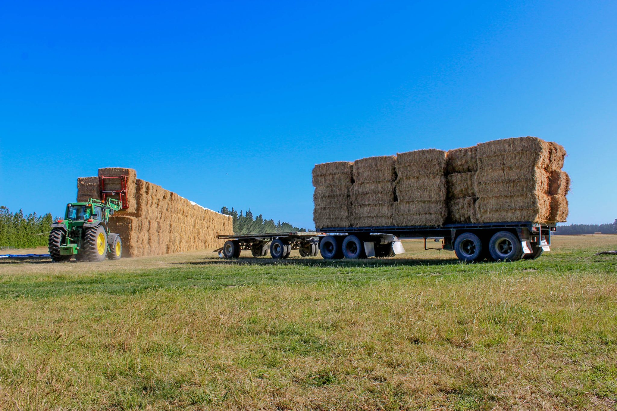 Loading Rye-grass straw into a stack ready for sale