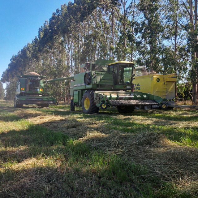 JD 9550 and 7720 unloading Shogun grassed into transport